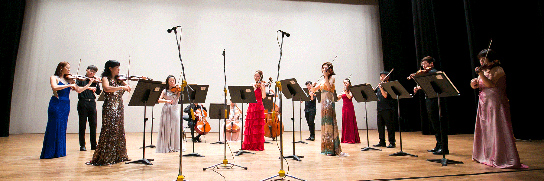 M&P Chamber Orchestra